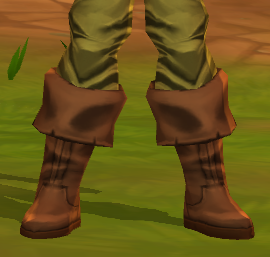 SturdyLeatherBootsF.png